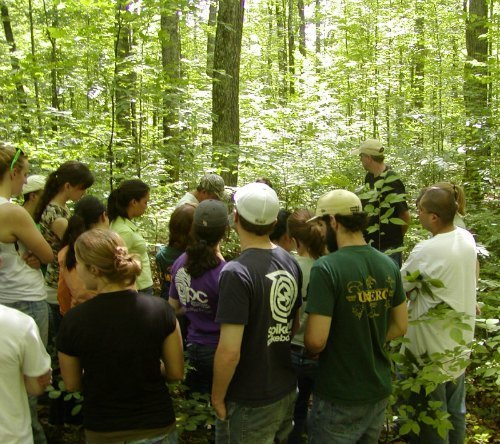 Walt Carson and Bob Evans discuss forest ecology with UNDERC students