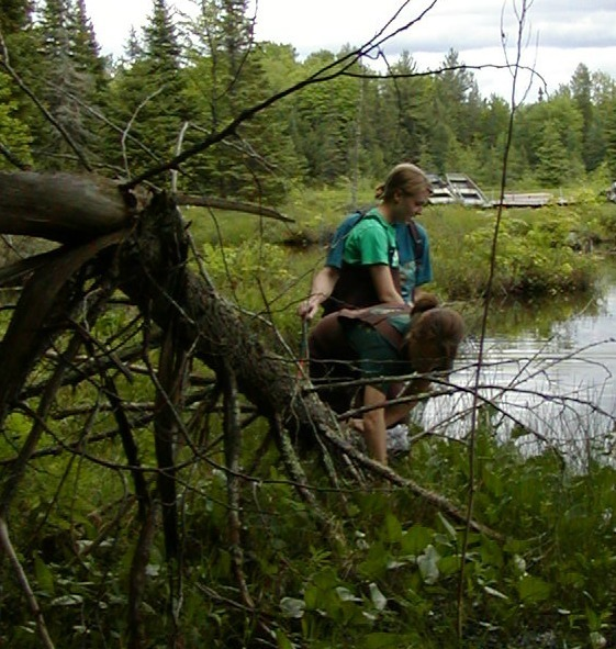 Students hunt for amphibians in a marshy area near a lake