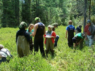 UNDERC students collect bog samples during the Aquatic Ecology module