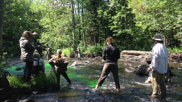 UNDERC students measure stream flow as part of the Aquatic Ecology module.